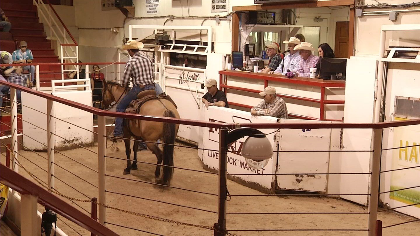Since a fluke horse-riding accident killed a little girl in Adrian, Missouri, asmall community has gone out of their way to support the family that lost their daughter. (Source: KCTV)