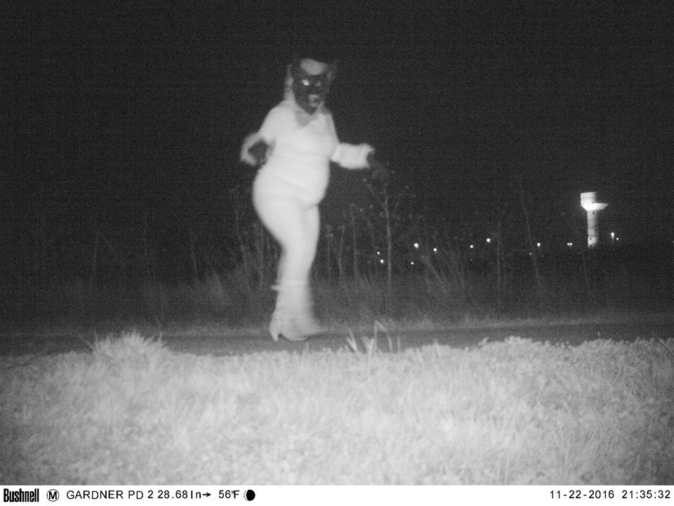 Residents caught wind of the cameras and proceeded to dress up as a gorilla, lions and other monsters.(Gardner police)