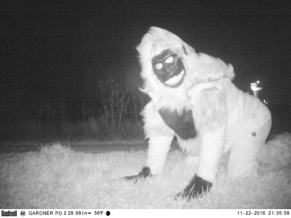 Residents caught wind of the cameras and proceeded to dress up as a gorilla lions and other monsters