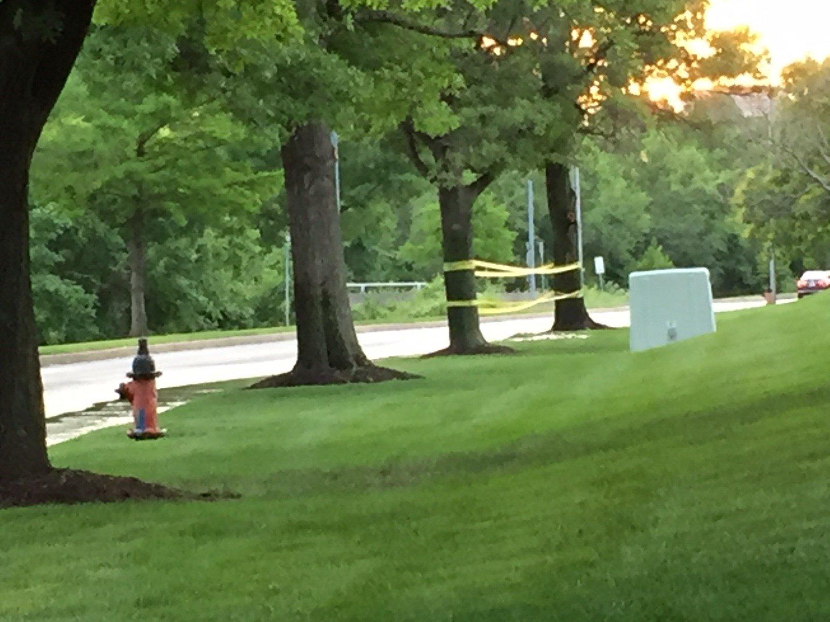 Shortly after 6 p.m., an 8-inch main water line broke. (Dwain Crispell/KCTV)
