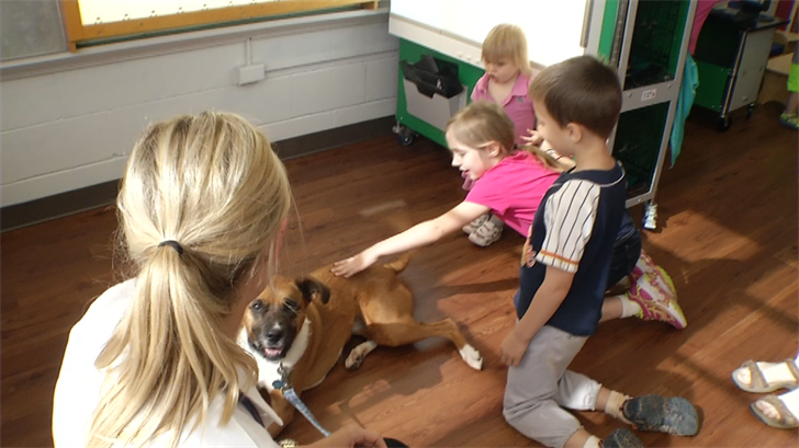 The program aims to teach children how to be safe around dogs, as well as exposing them to veterinary medicine. (KCTV)