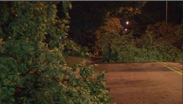 During the storm, the wind knocked branches off trees and made driving nearly impossible down some metro streets. (KCTV5)