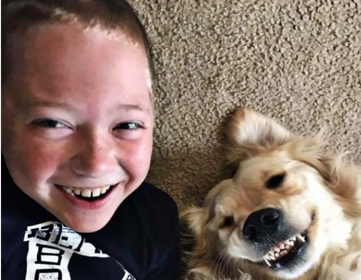 Six is trained to sense a seizure as long at 15 minutes before it happens. The dog can smell a change in scent from Weston's body. (Submitted)