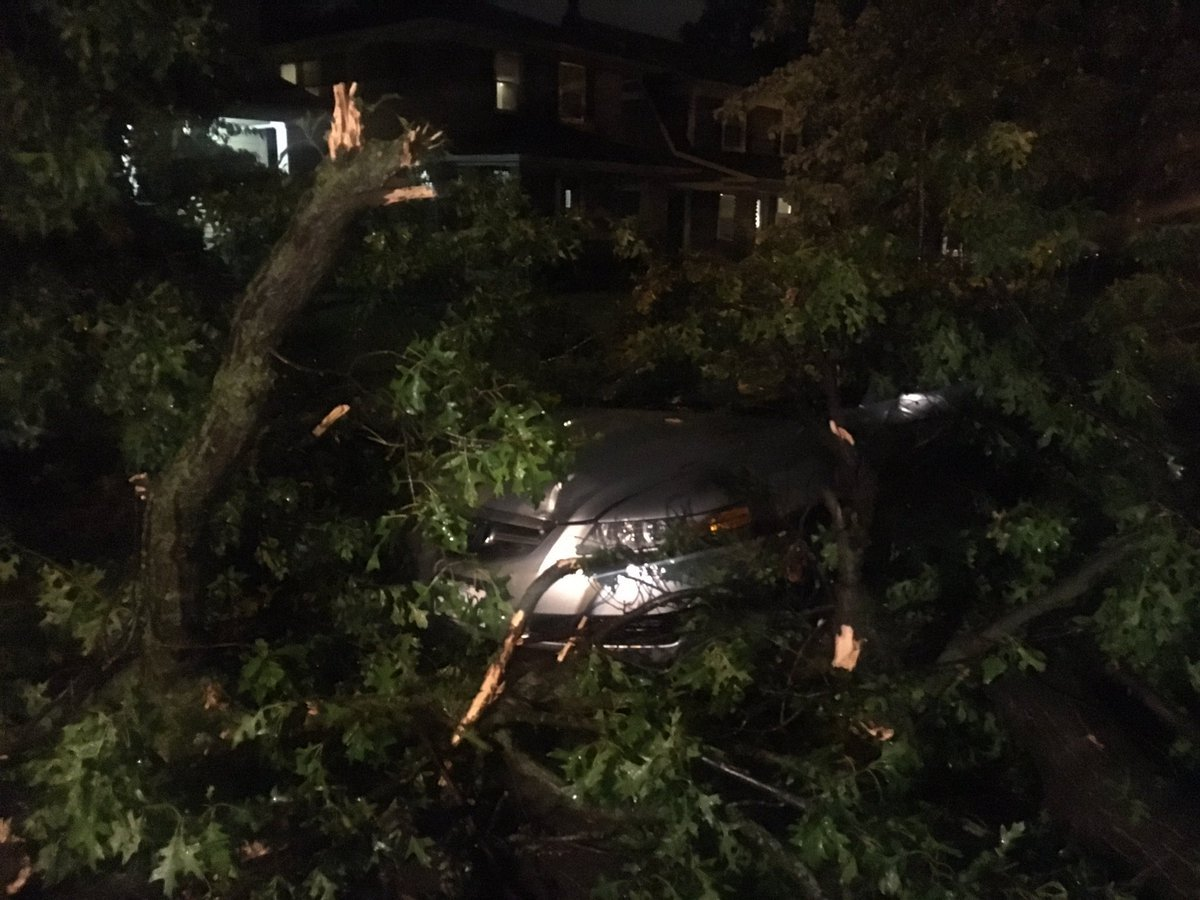 A tree limb fell on a car near 59th and Cherry in KCMO. (Abigael Jaymes/KCTV5)