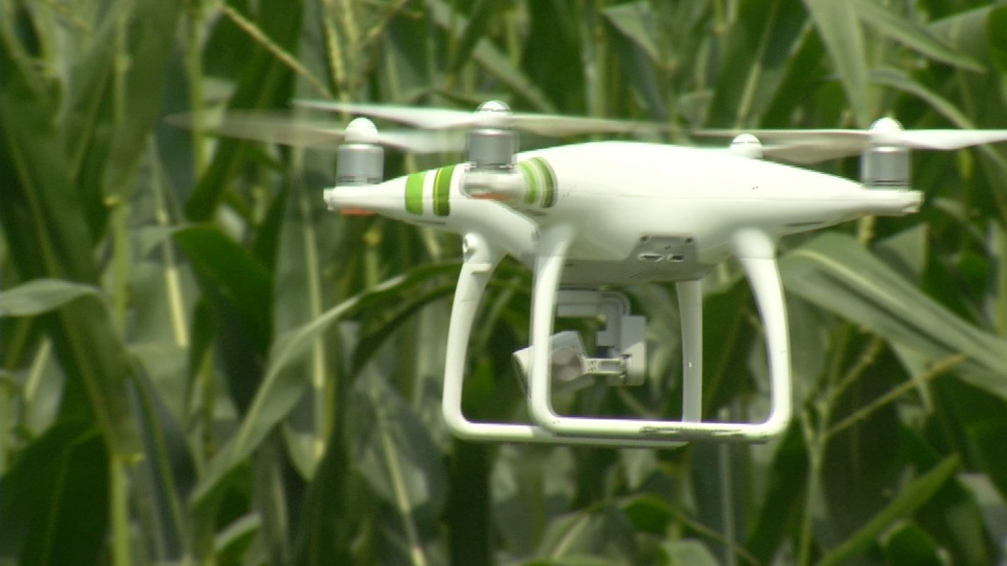 At The Farm Research Center in Cass County, Chad Middaugh scouts his corn and soybean plots using a small unmanned aircraft, a drone. (KCTV5)