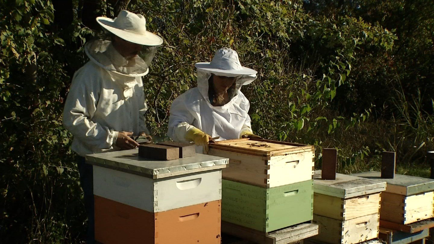 The Messner Bee Farm is expanding in an effort to help better produce items like lip balm, sunscreen, deodorant and perfume. (KCTV5)