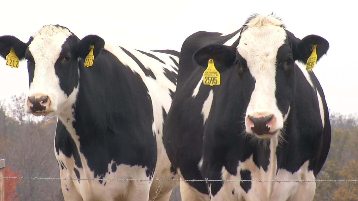 Farmers are using cutting-edge technology to produce the food Americans consume. (KCTV5)