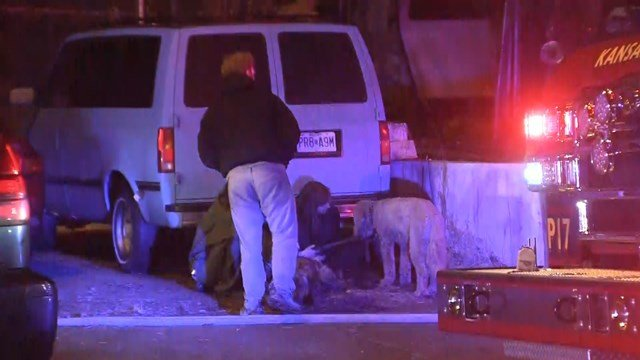 Officials believe five-to-six peoplelived at the home. (KCTV5)