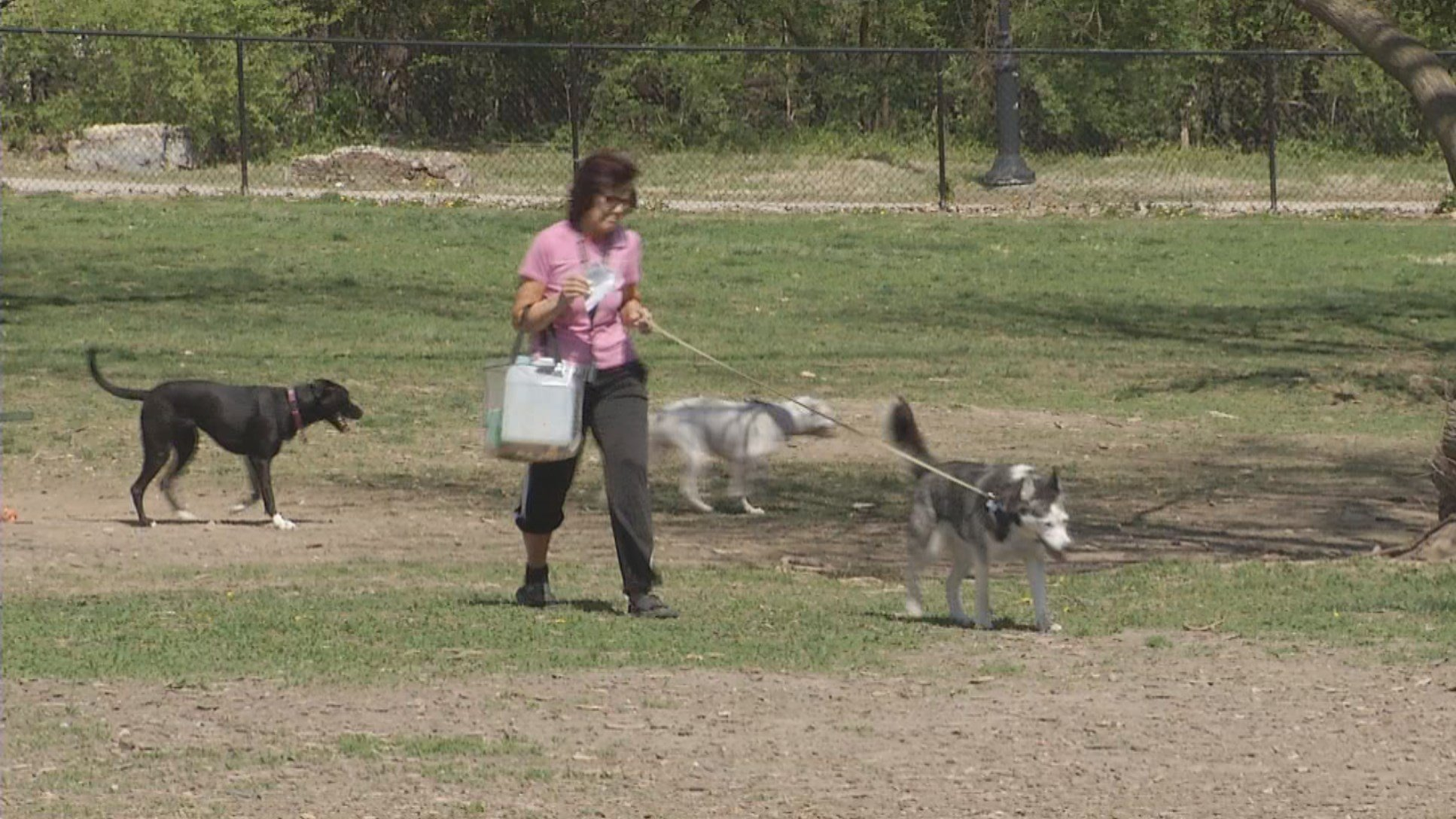 Downtown dog owners are tired of people leaving their trash in areas where their pets play. (KCTV5)