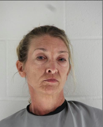 Evelyn Phillips had her first appearance in court on Monday. (Johnson County Jail)