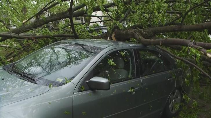 Storm damage in Blue Springs. (KCTV)