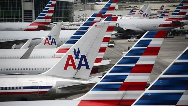 American Airlines is making it very clear: Insects, goats and hedgehogs cannot be brought on planes as emotional support animals. (CNN)