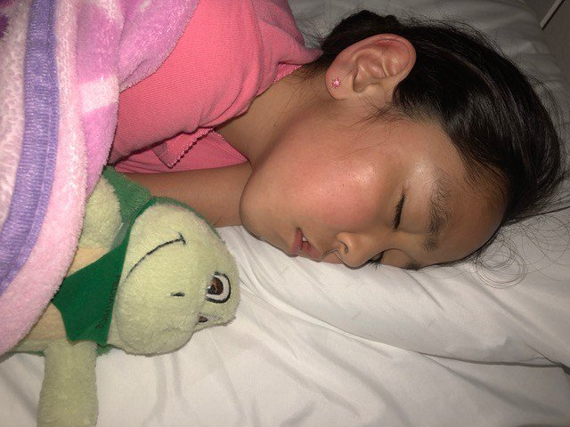 Nurses at Overland Park Regional gave the 8-year-old a stuffed turtle when she lost her brother. (Submitted)