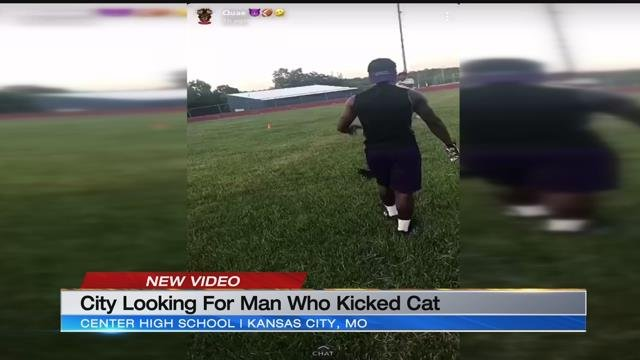 GRAPHIC: Video shows man punting cat on Kansas City football field