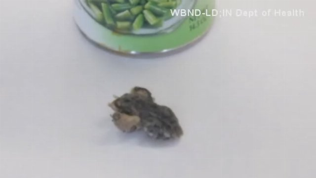 An Indiana woman was disgusted by what she served up at the dinner table.  A toad was found inside a can of green beans.