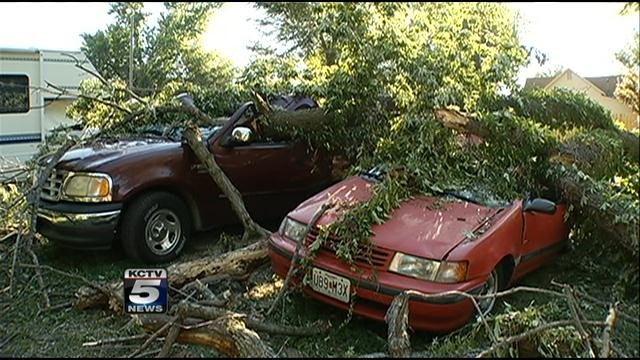 A Buckner family thought it was an earthquake when a tree came crashing down on top of their cars.