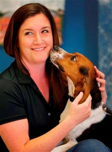 (AP Photo/Orlin Wagner). Elvis, a 2-year-old beagle, enjoys a moment with Erin Curry at Iron Heart Performance Dog Center in Shawnee, Kan., Monday, Oct. 28, 2013.