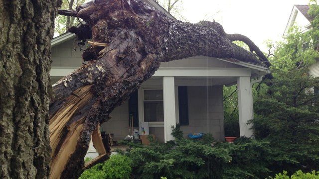 A large tree fell on one house near West 42nd and Bell streets in Kansas City. (Bill Lindsay/KCTV5)