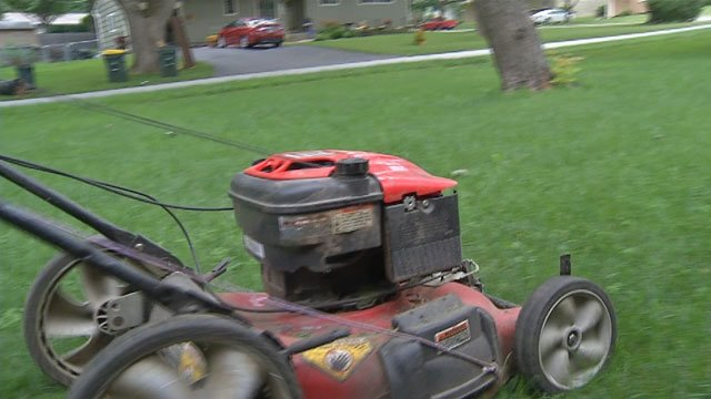 Thieves broke into shed after shed - at least half a dozen - in the 9900 block of Mercier Street to steal lawn mowers, leaf blowers, chainsaws and more.