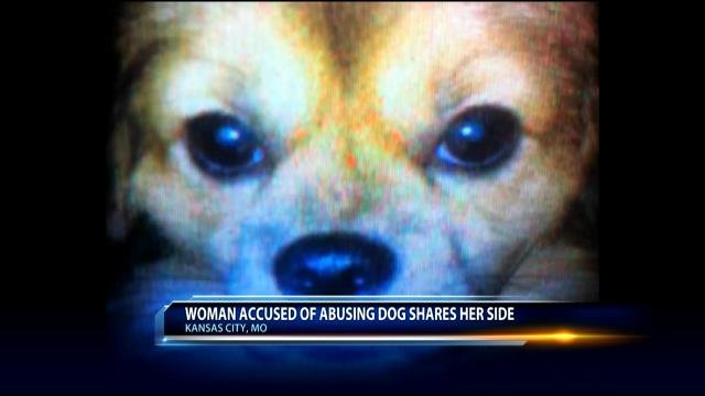 According to court records, multiple witnesses told authorities that they saw Anderson abuse the brown Tibetan Spaniel.