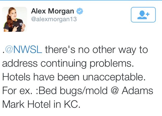 Adams Mark Bed Bugs