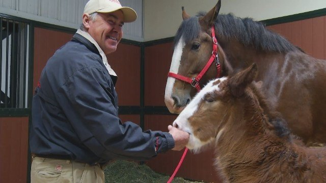 John Soto, supervisor at Warm Springs Ranch, with Mac and his mother (KCTV5)